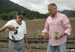 Longtime Honduran tobacco skeptic Rolando Reyes Sr., left, and Enrique Diez holding tobacco seedlings in Danlí.