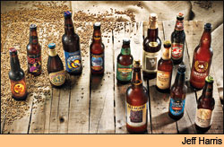The craft brewing revolution presents the American beer drinker with a kaleidoscope of