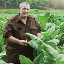 John Oliva Jr., surrounded by acres of ripening Havana-seed leaves growing in a field named for his legendary grandfather, Angel Oliva Sr.