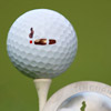 http://images.cigaraficionado.com/cao/Thumbnail_100/tincupgolfball-100.jpg